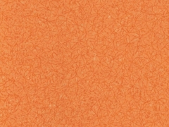 202 М солнечный мандарин (матовый)